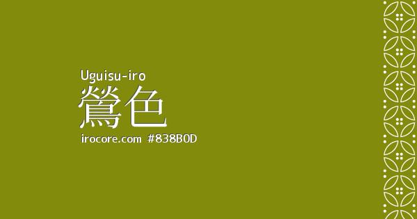color2 (1)