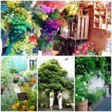 杉並区阿佐ヶ谷にある一軒家の花屋フラコッタデコです