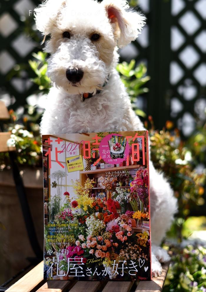 【動画あり】『花時間』に掲載されました!お花が好きな方必見!