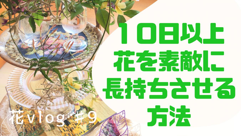 【動画】え!なんと10日以上はお花を楽める