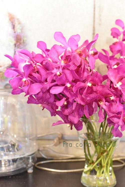 パープル系のお花