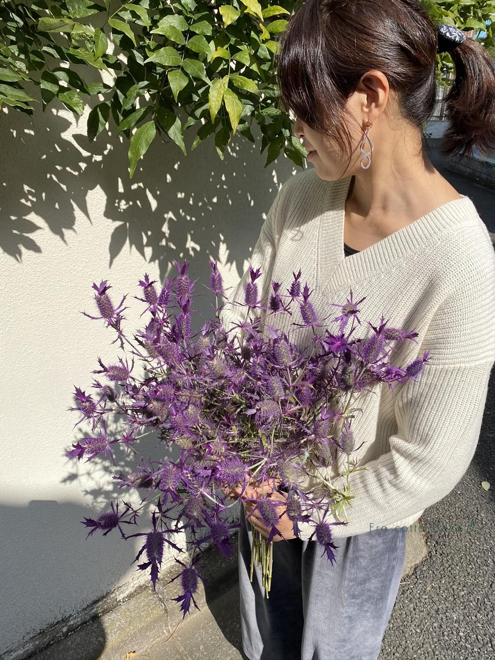 絶対に長持ち!ドライになるお花がたっぷりと入荷しました