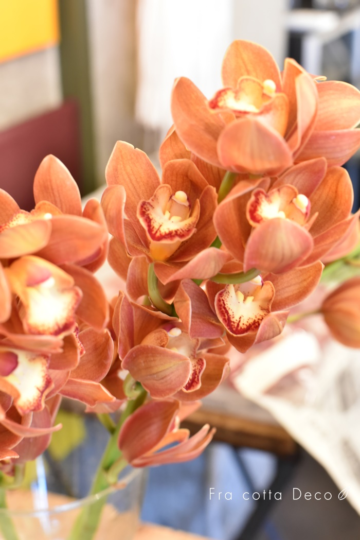今週はカラフルなお花やバラなど色鮮やかです